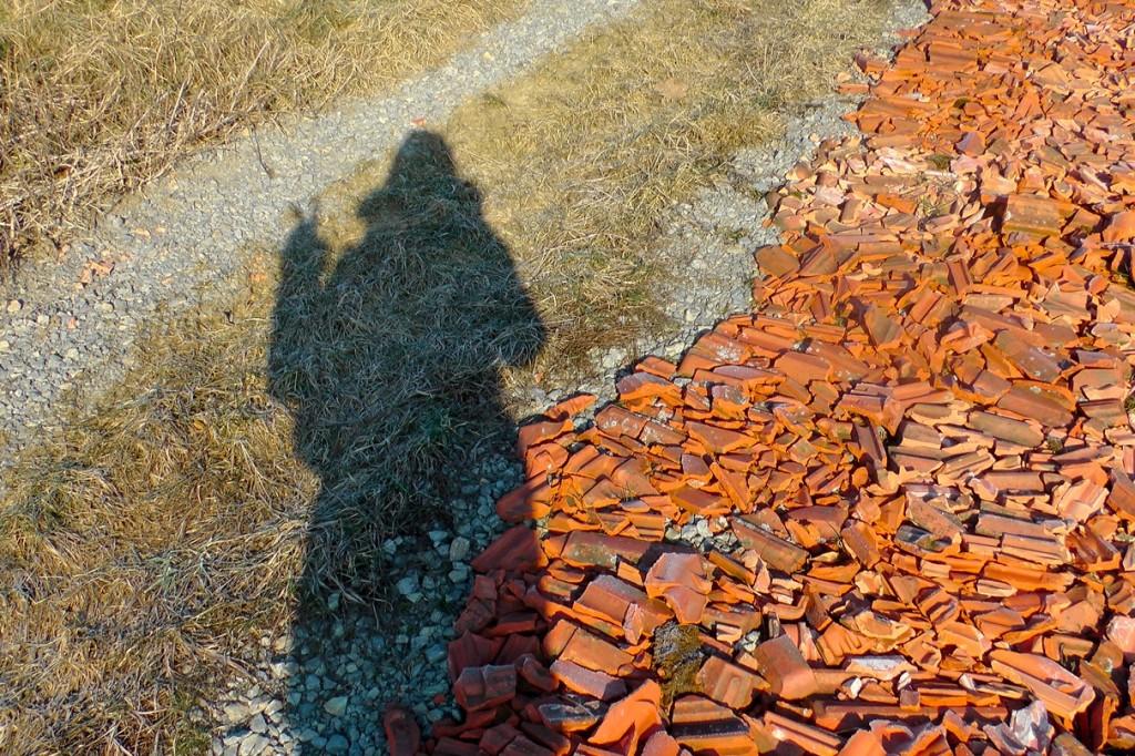 Schatten-auf-Feld