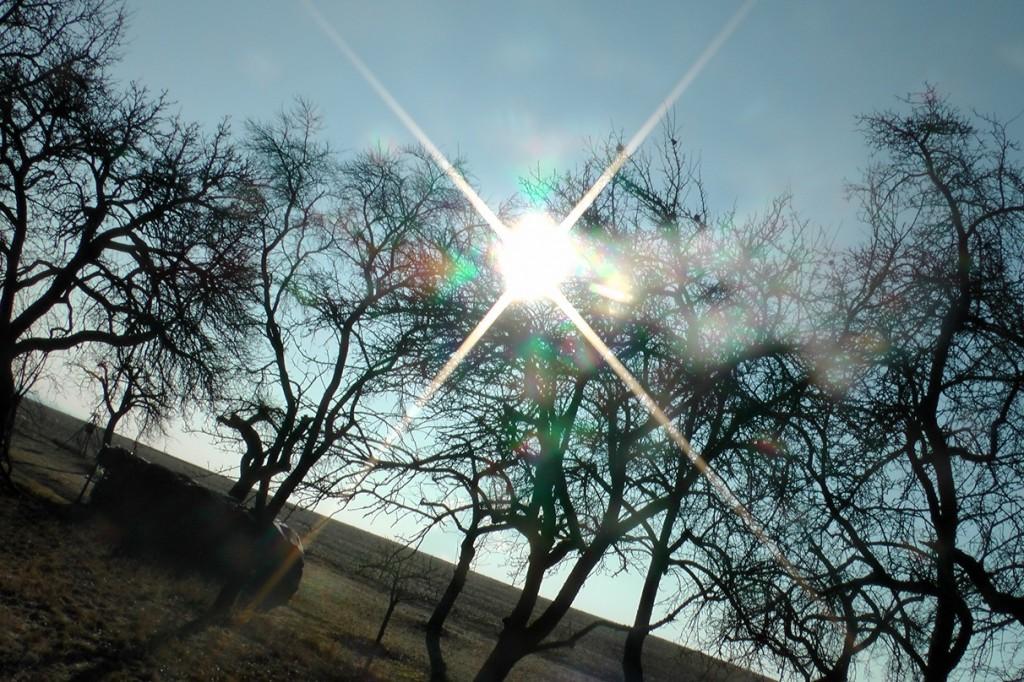 Sonnenaufgang-auf-dem-Land