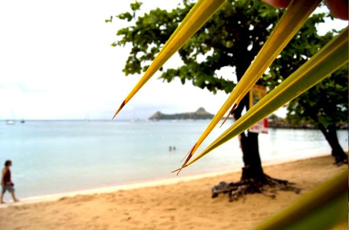 Beach-Karibik