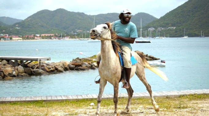 Karibik-reiten