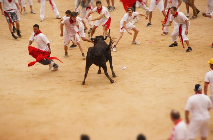 bull-arena