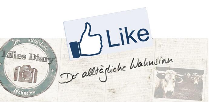Like-Lilies-Diary