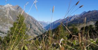 Die-schönsten-orte-in-zermatt