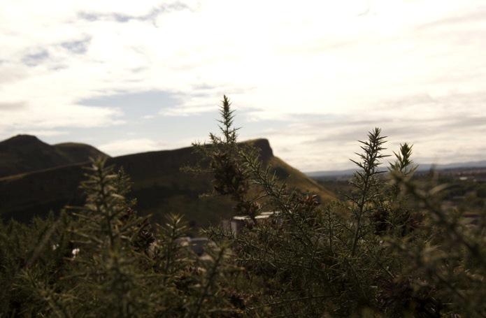 schottland-landscape