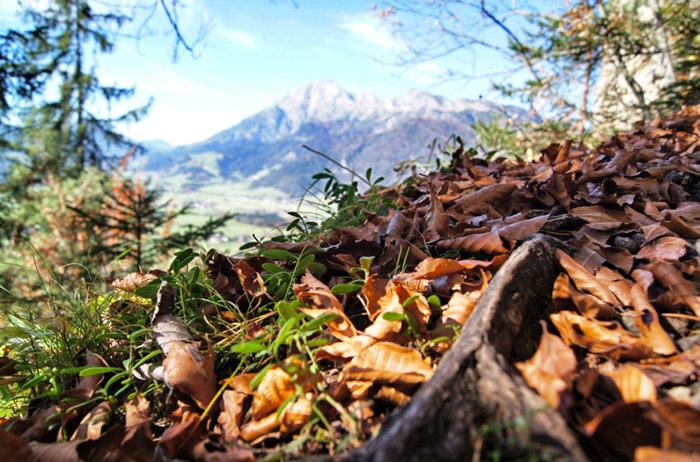 Ausblick-Kitzsteinhorn