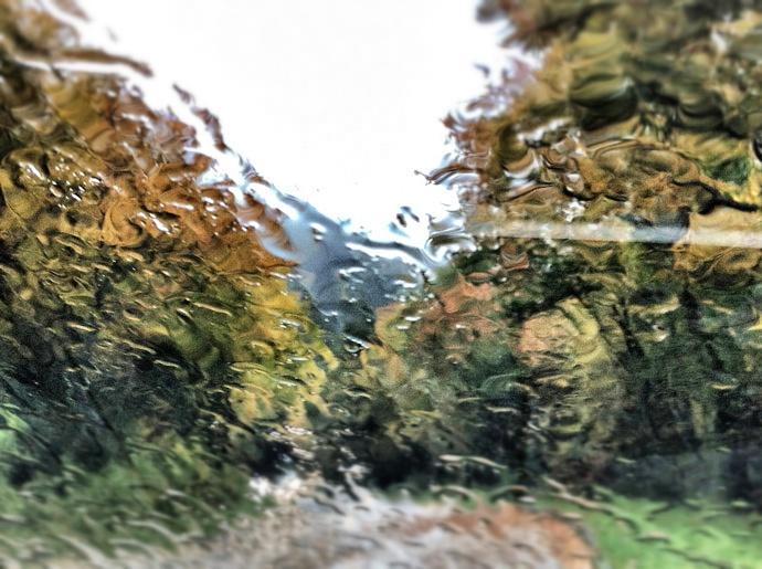Regen_auf-Scheibe