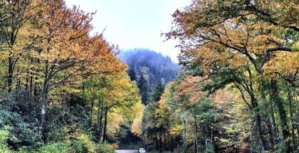 Smokey-Mountains_Nationalpark