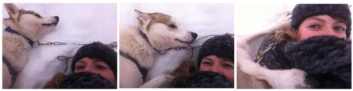 Husky-Freundschaft