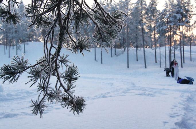 Schneeschuh-Wanderung-Finnland