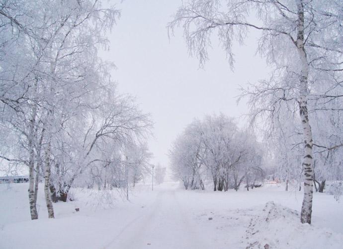 Winter-Finnland