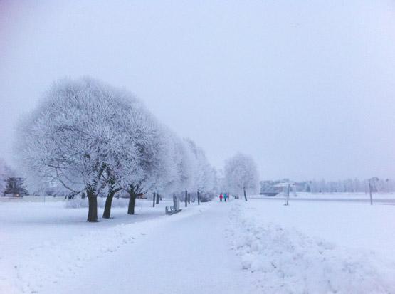 Winterlandschaft-Finnland