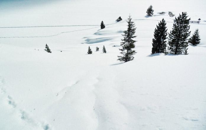 Winterlandschaft-osttirol-nikons800c