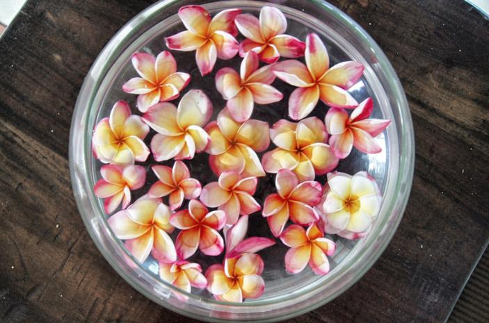 Seychellen-Blumen