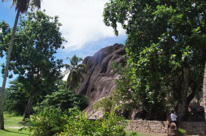 Granitfelsen-Seychellen
