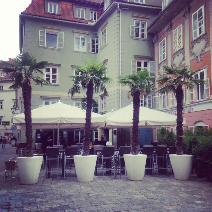 Graz-Palmen