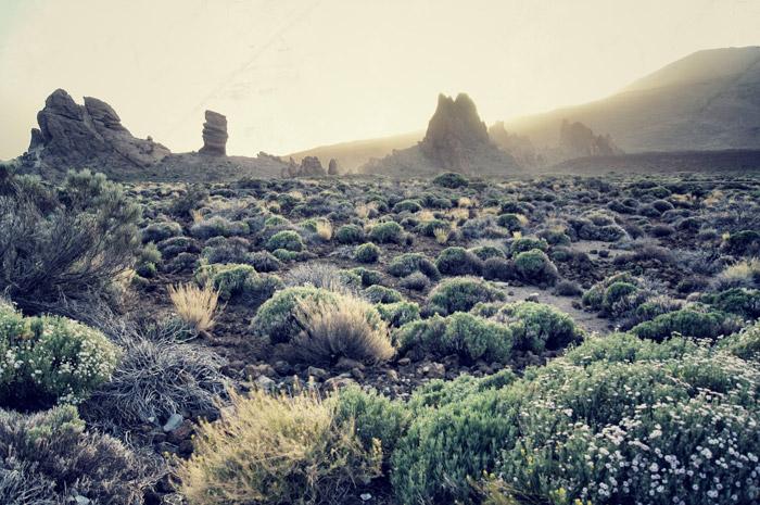 Roques de Garcia-Teneriffa