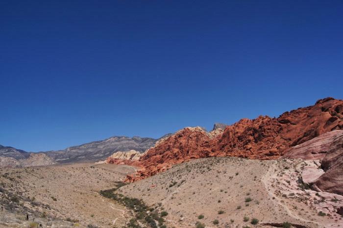 Amerika-Red-Rock-Canyon