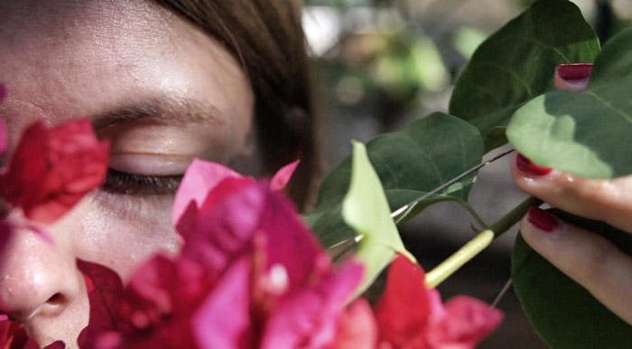 Christine-Neder-Blumen