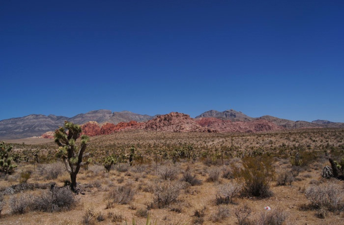 Landschaft-Red-Rock-Canyon