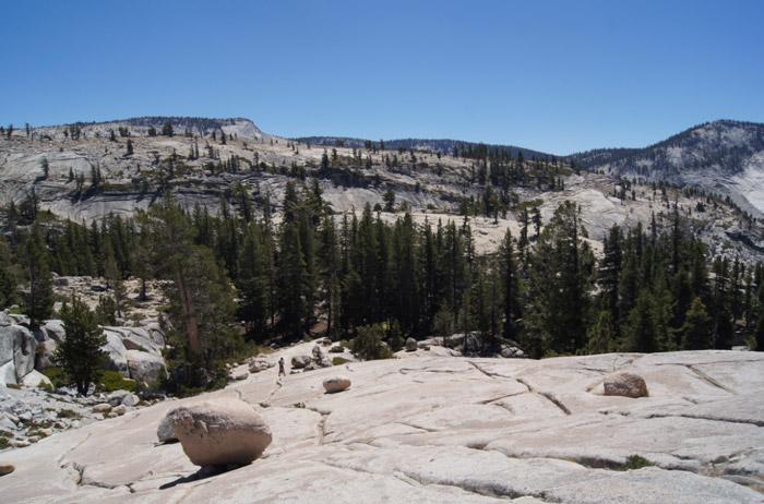 Natur-Yosemite-National-Park