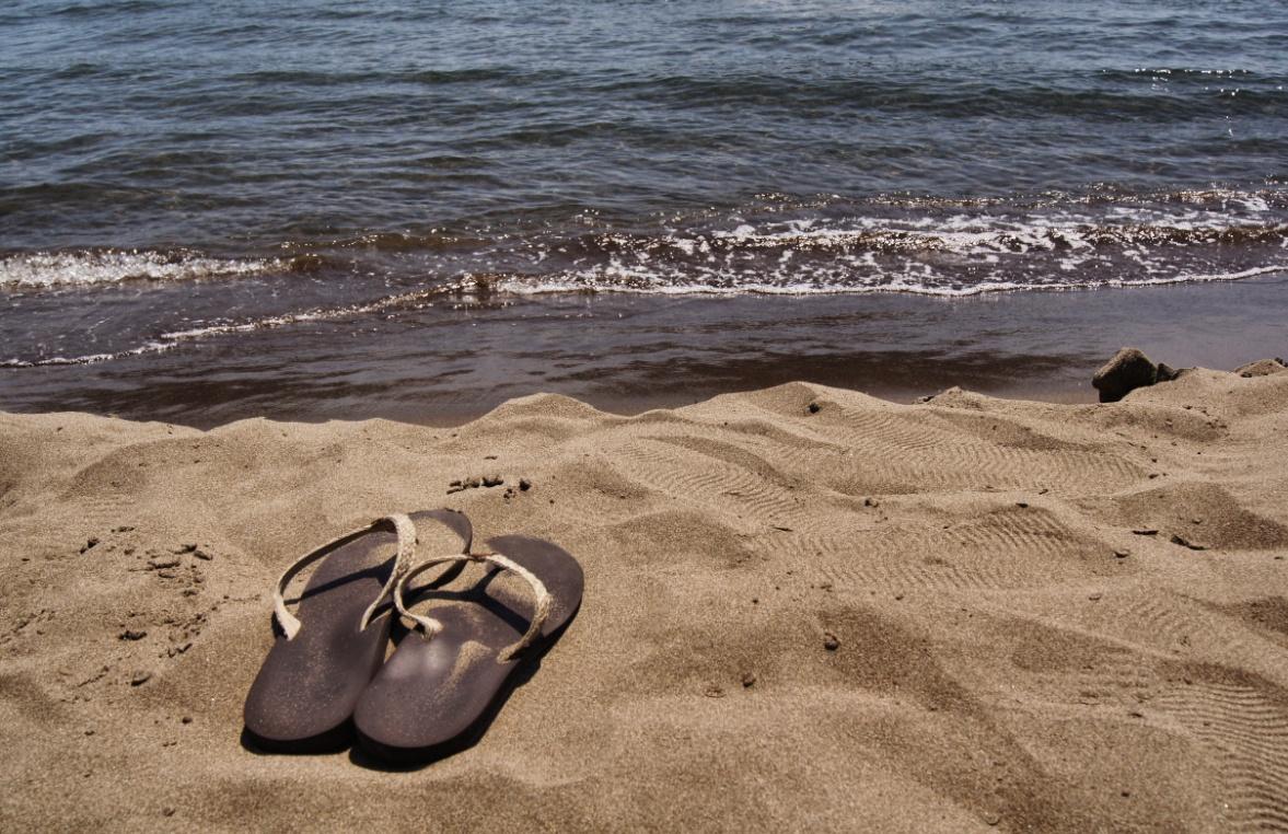 Strand-Sarigerme