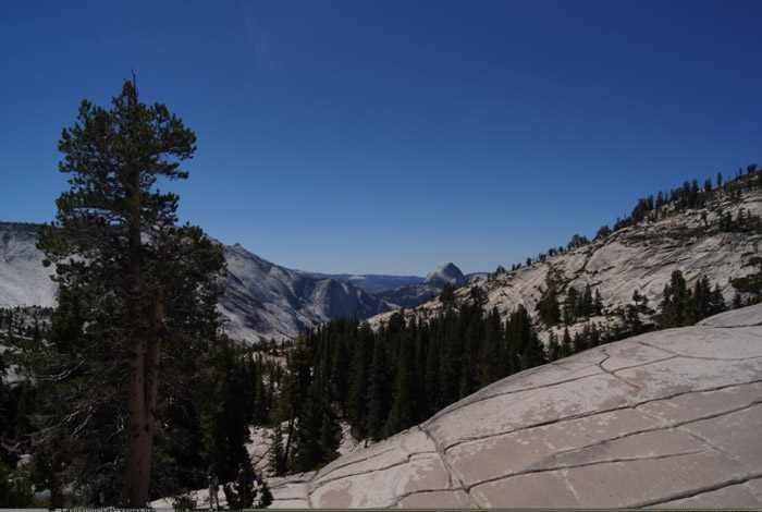 View-Point-Yosemite-National-Park