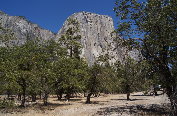 Yosemite-National-Park-Valley