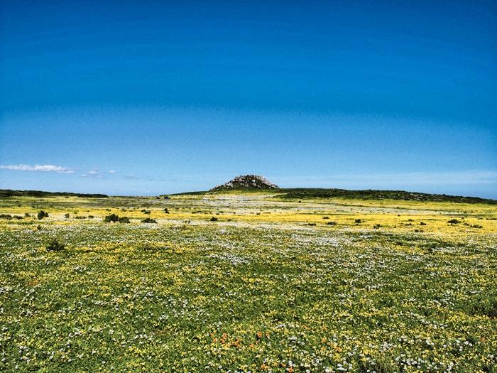 Namaqualand-01