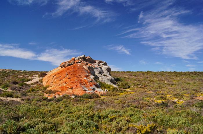 Namaqualand National Park-Südafrika