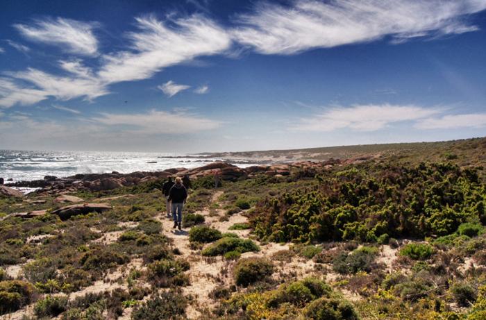 Wanderung-Namaqualand National Park-Südafrika