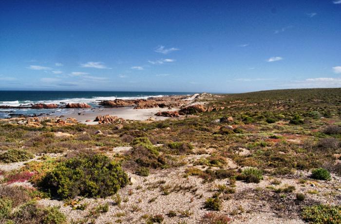 Westküste-Südafrika-Namaqualand National Park