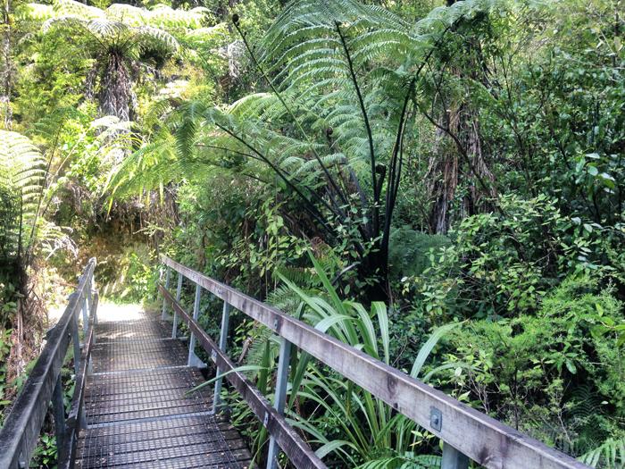Abel-Tasman-Walk