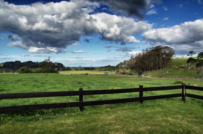 Coromandel-Neuseeland