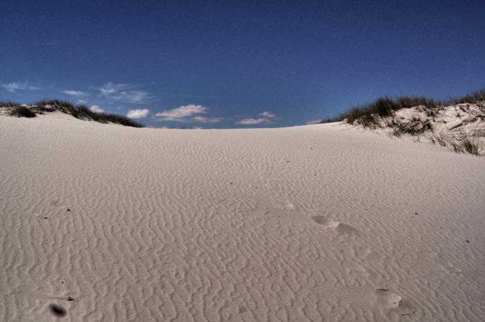Dünen-Safari-Afrika