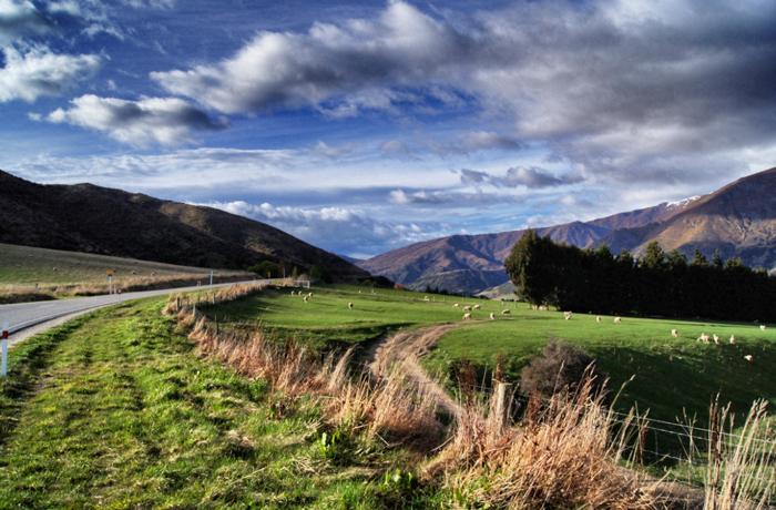 Landschaft-Neuseeland-Südinsel