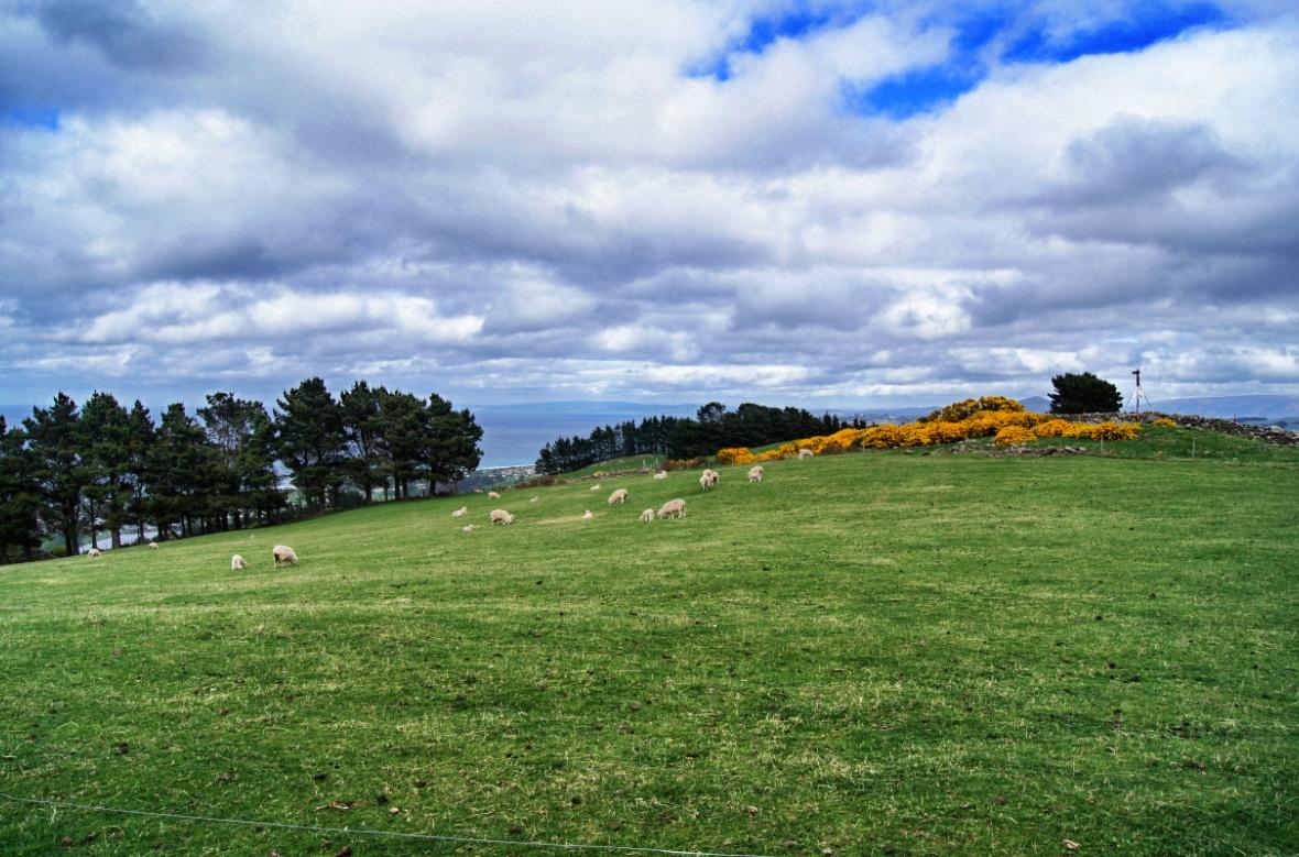 Landschaft-Neuseeland