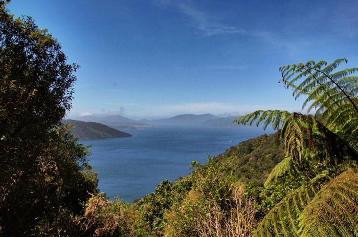 Natur-Neuseeland-Südinsel