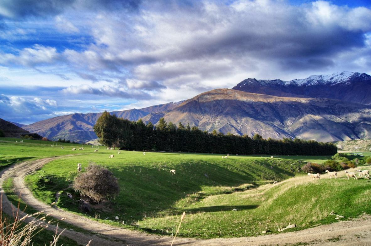 Neuseeland-Natur