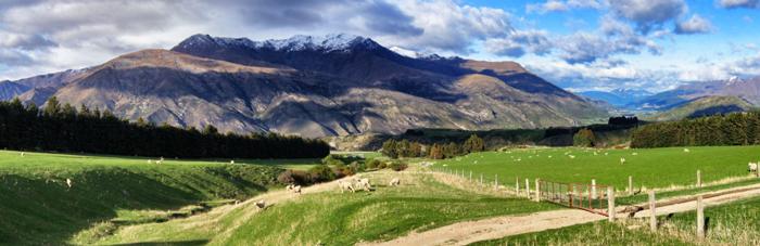 Panoramablick-Neuseeland