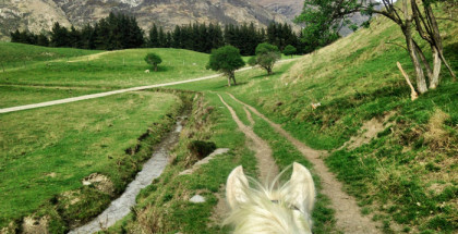 Reiten-in Neuseeland