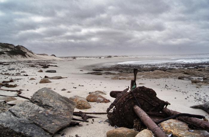 Strand-Westküste-Südafrika-Safari