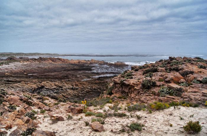 Westküste-Namaqualand