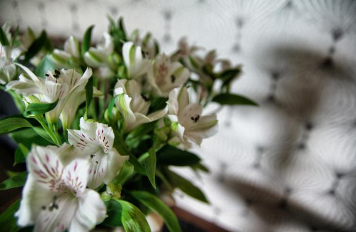 Sofitel-Auckland-Blumen