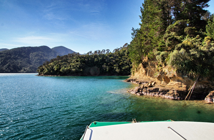 Beachcomber-Marlborough-Sounds