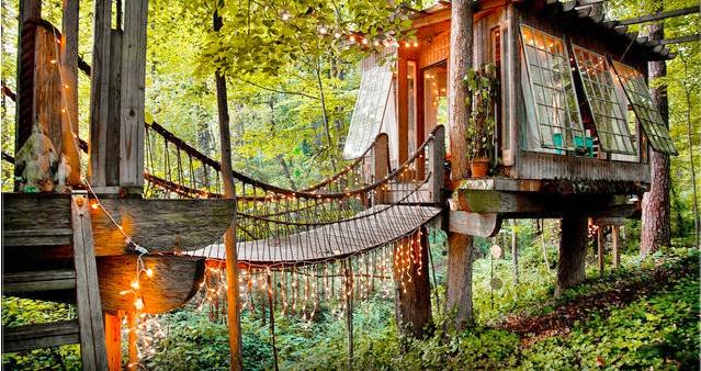 Dschungel-Baumhaus-Airbnb