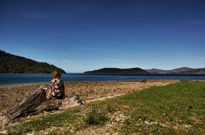 James-Cook-Marlborough-Sounds