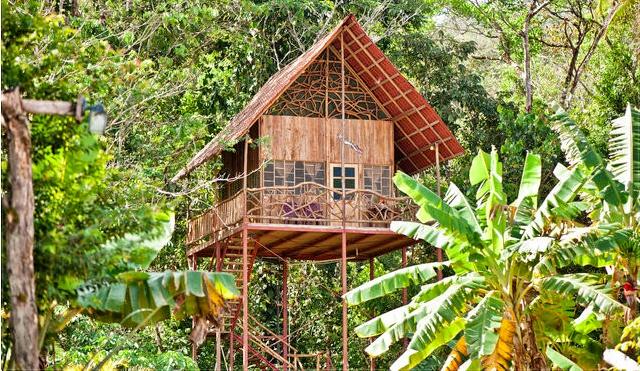 Luxus-Dschungel-Airbnb