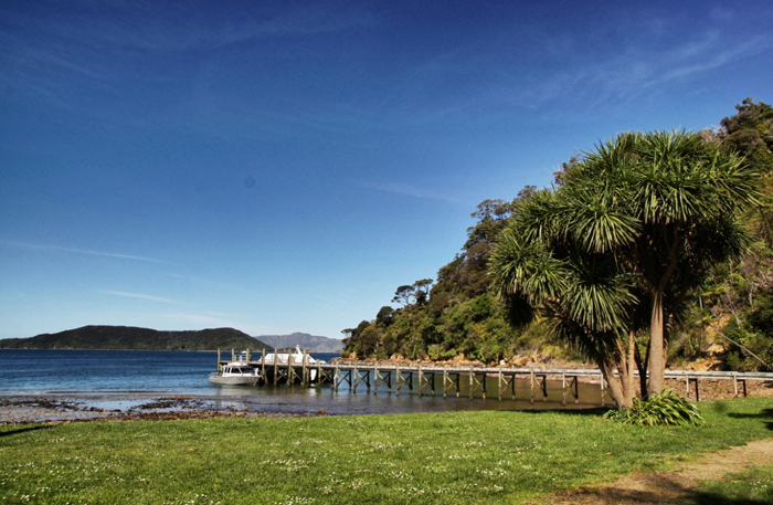 Marlborough-Sounds-James-cook