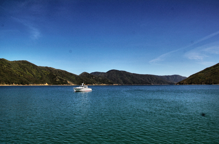 Marlborough-Sounds-Neuseeland
