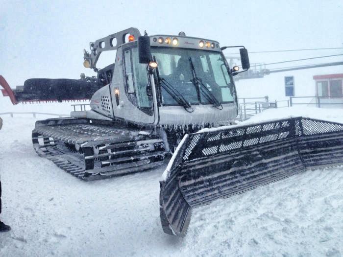 Meraner Land - Schneekatze